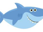 Cortador Dady Shark 11cm(largura)