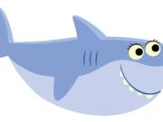 Cortador Momi shark 11cm(largura)